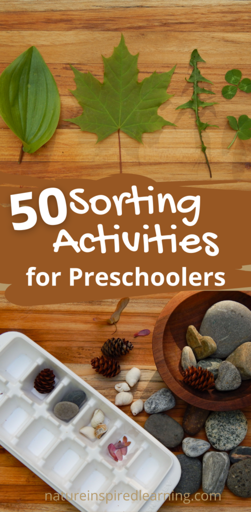Save for Later Pin 50 sorting activities for preschoolers natureinspiredlearning.com leaves and nature elements with ice cub tray