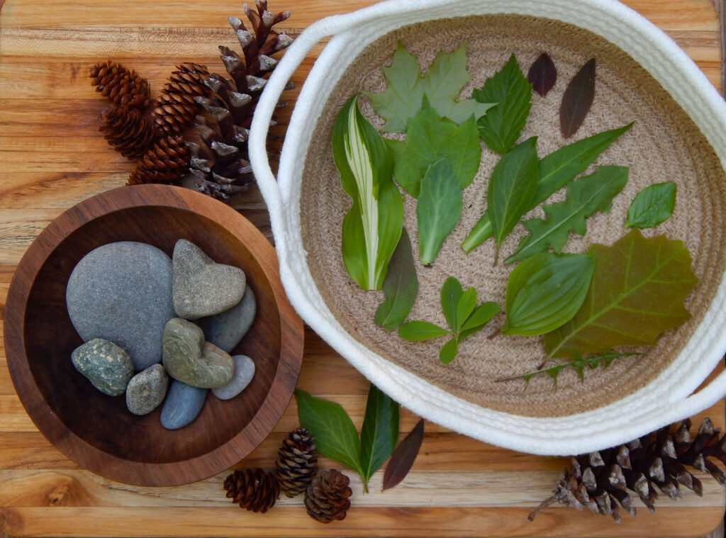 beach and rive rocks in a wooden bowl different colored green leaves in a basket and pine cones on a wooden board for a preschool sorting activity