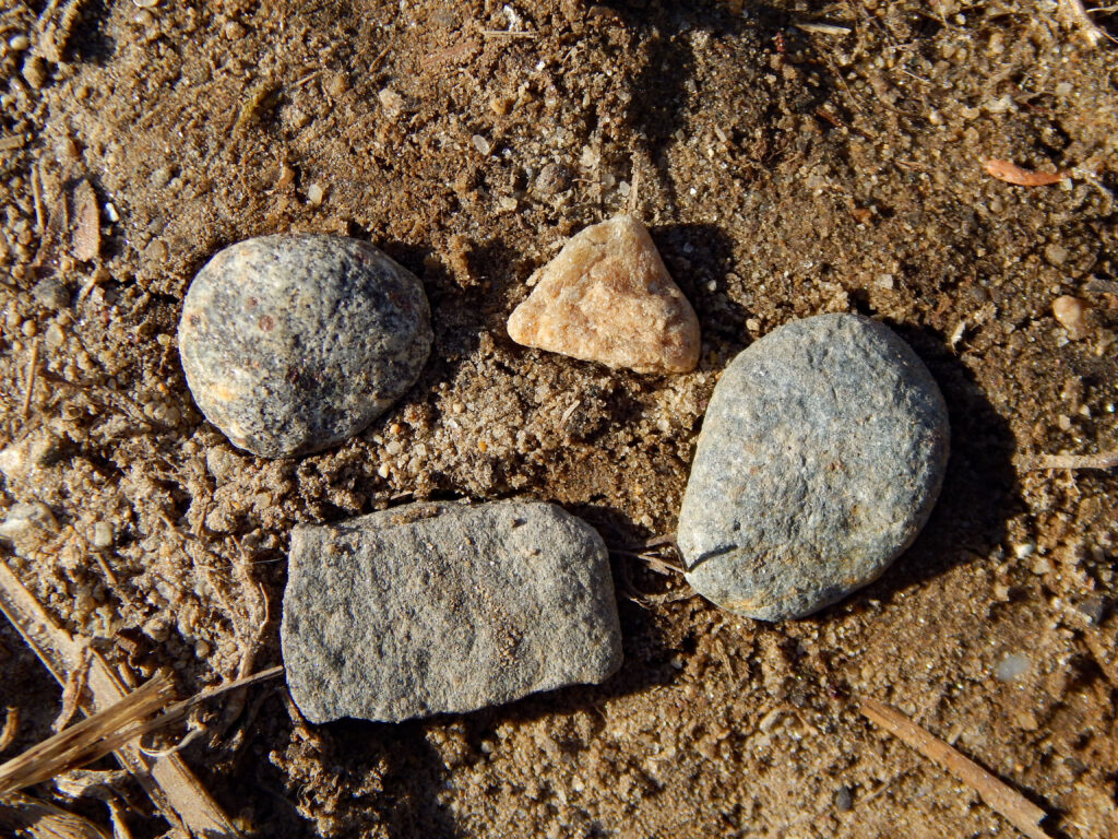 different shaped rocks in the dirt found outside