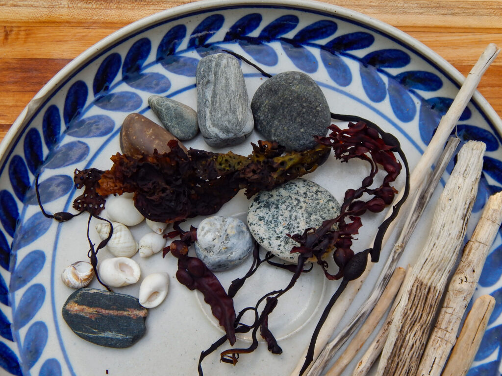 a collection of beach rocks, dried seaweed, small white shells, and diftwood for a rocky shore sensory bin in a handmade pottery platter with blue designs