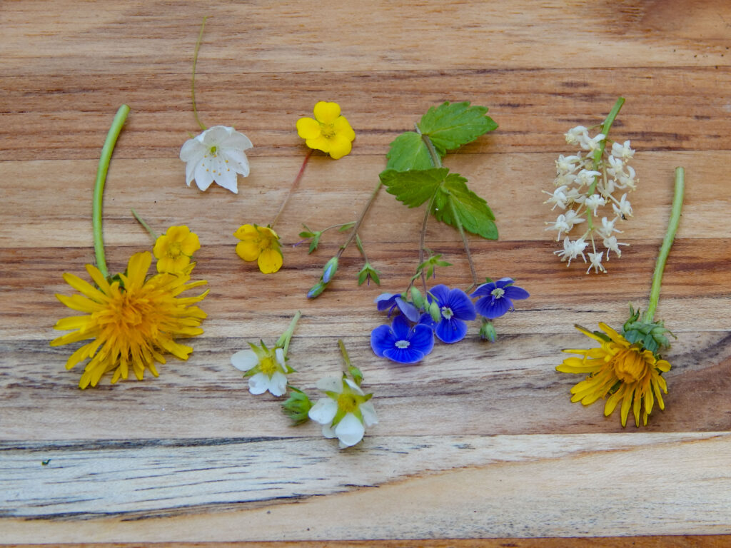 wildflowers sorted on a wooden board yellow, white, and bloom blooms