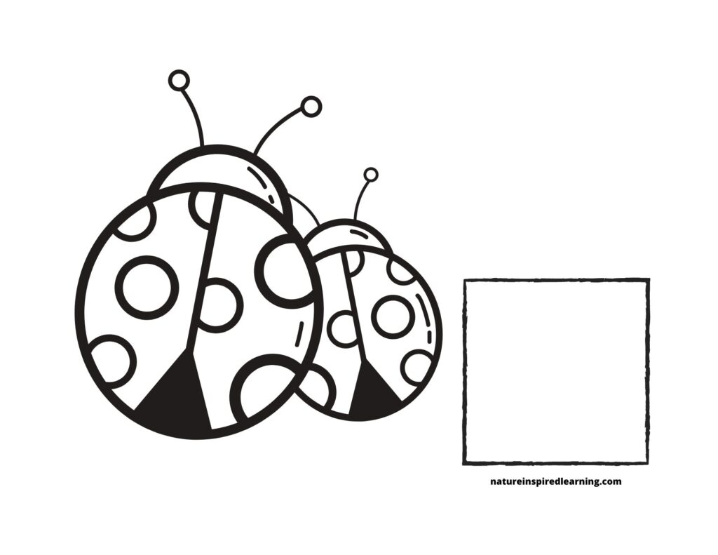 Counting Lady bugs Coloring Page 2