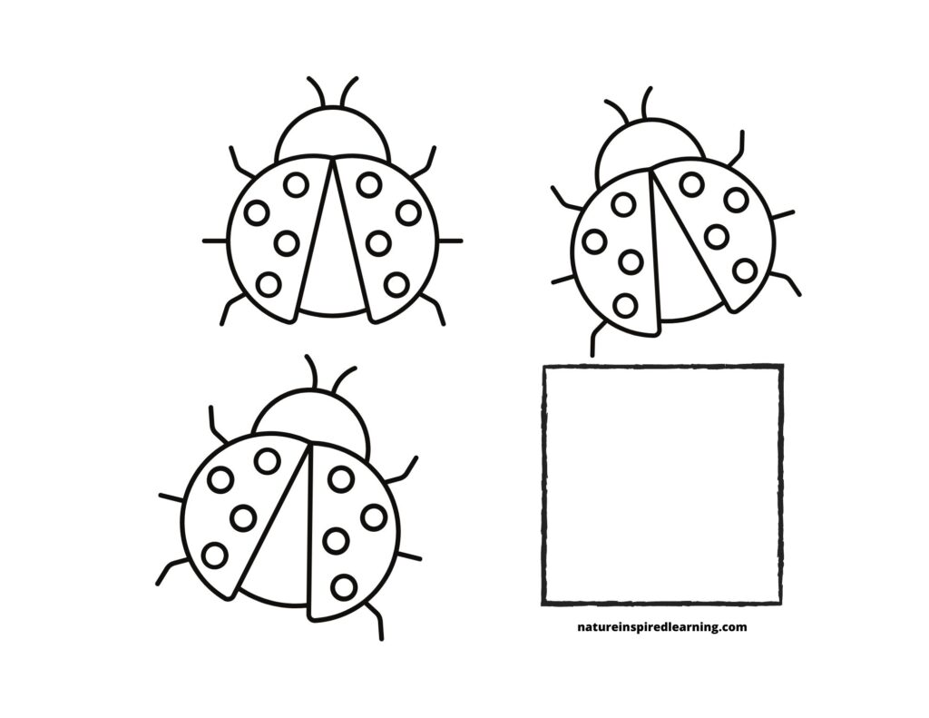Counting Lady bugs Coloring Page 3