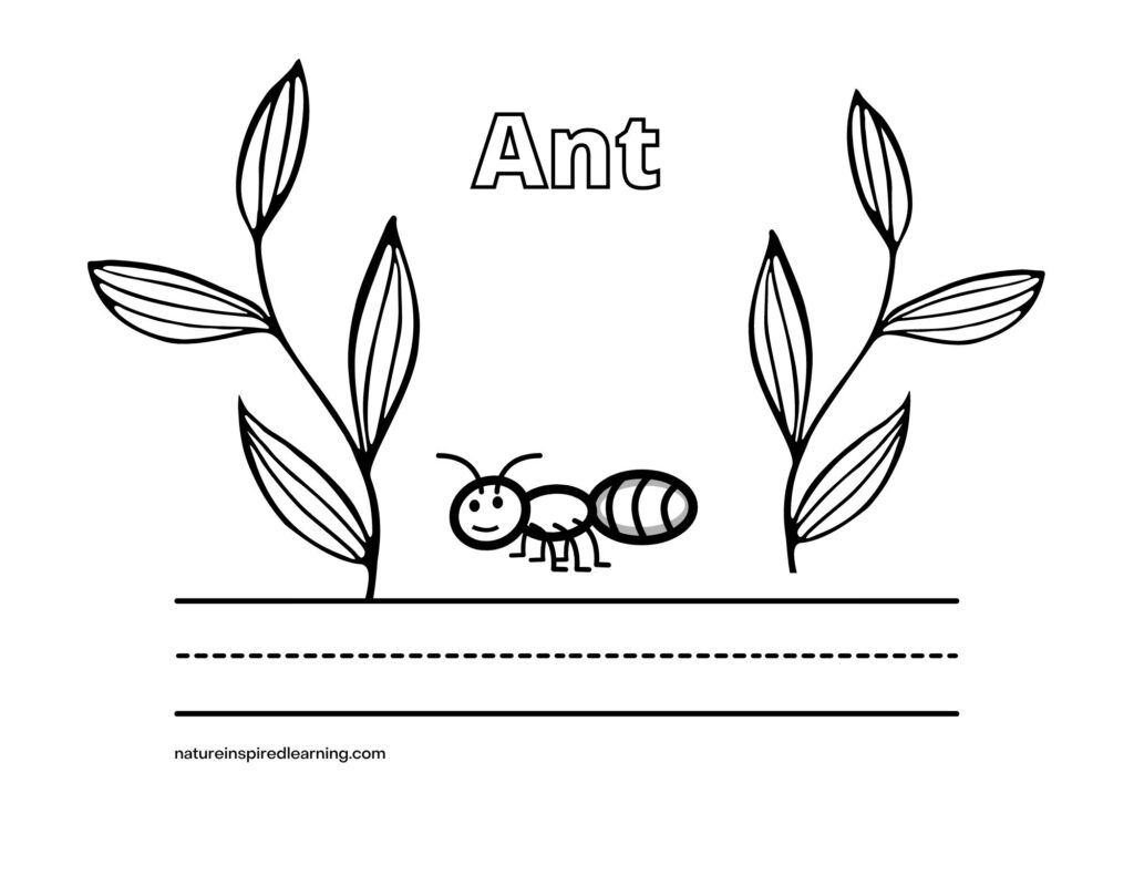 ant word with image and plant leaves coloring page