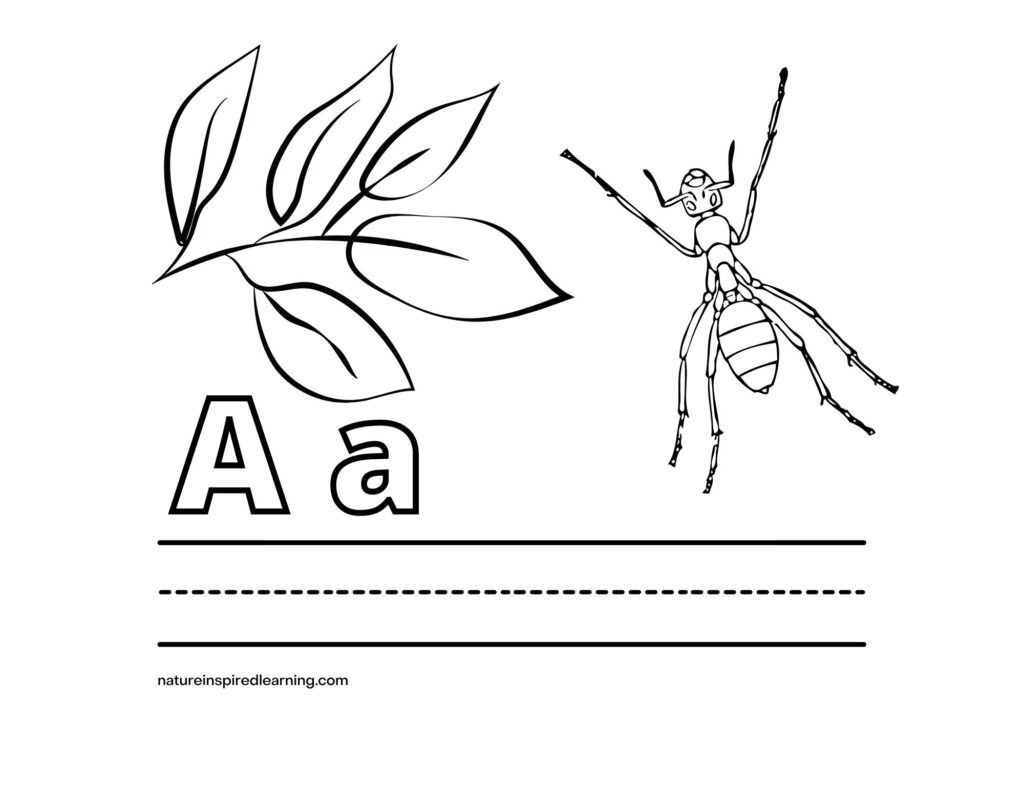 Uppercase Letter A Lowercase Letter a ant coloring sheet