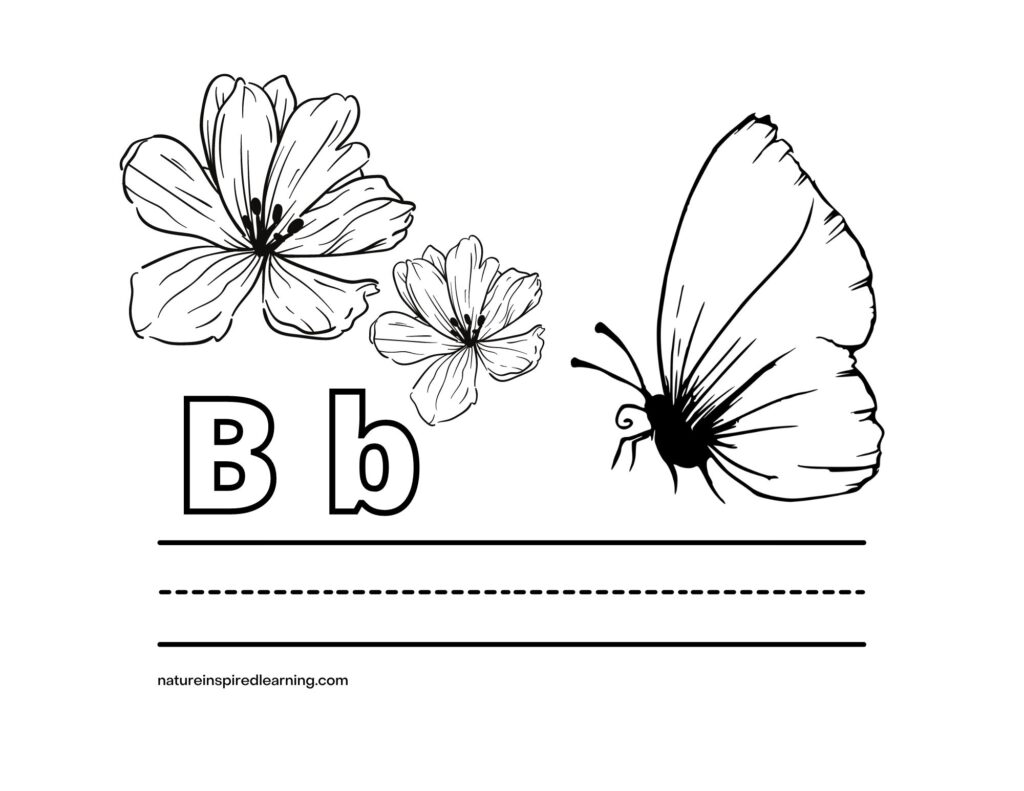 Uppercase B lowercase b butterfly coloring sheet