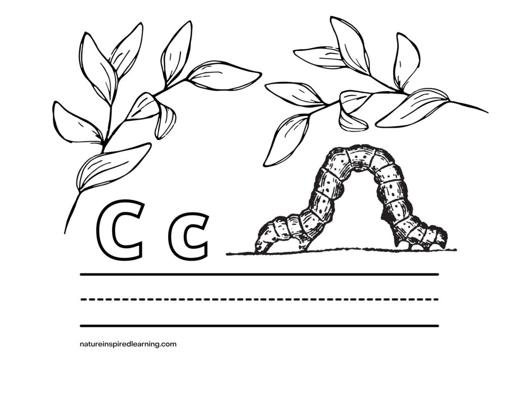 caterpillar Uppercase and Lowercase letter C with image and leaves coloring page