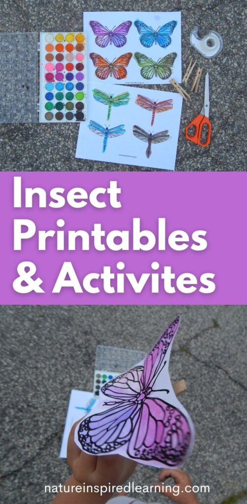 insect crafts and printables for kids pin