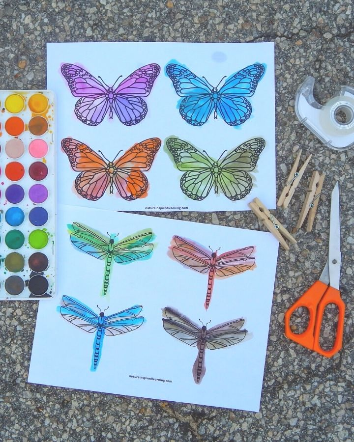 butterfly and dragonfly insect printables outside with supplies