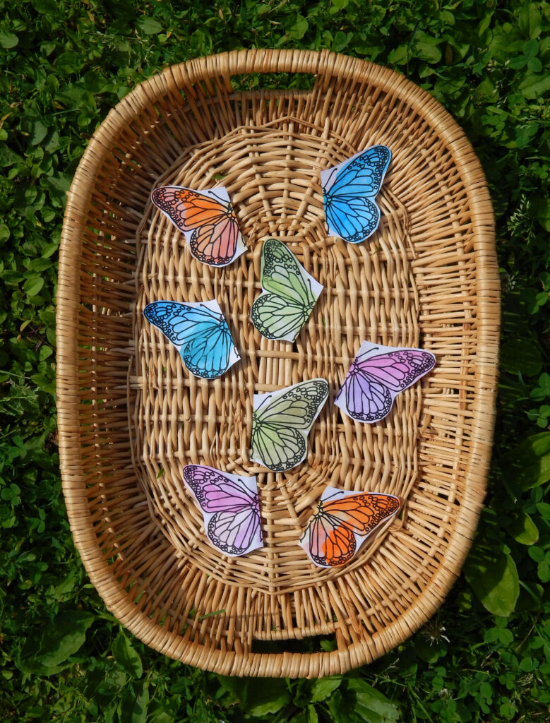 woven basket with insect sorting activity for preschoolers