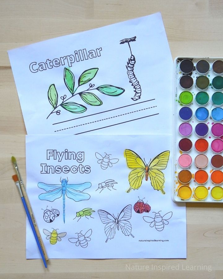 two insect printables colored in with water color paint on a wooden table with art supplies