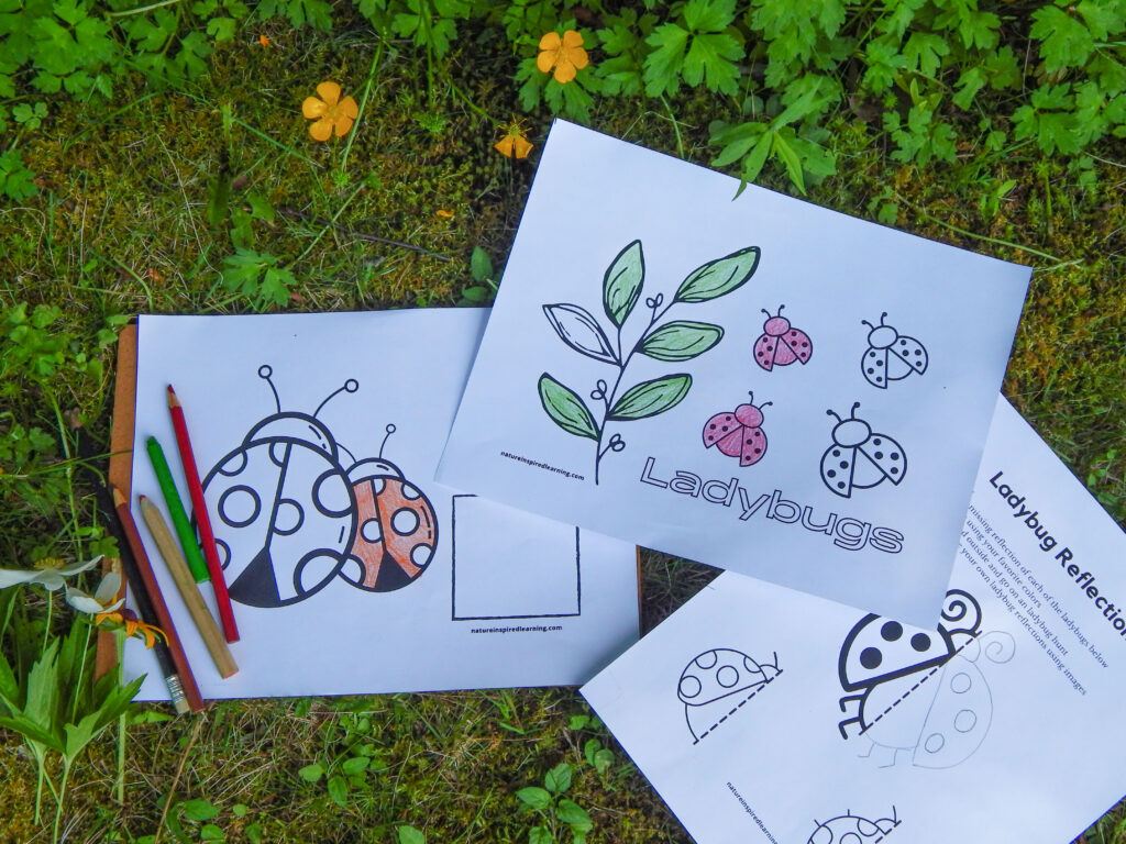 printable ladybug coloring pages outside partially colored in with art supplies