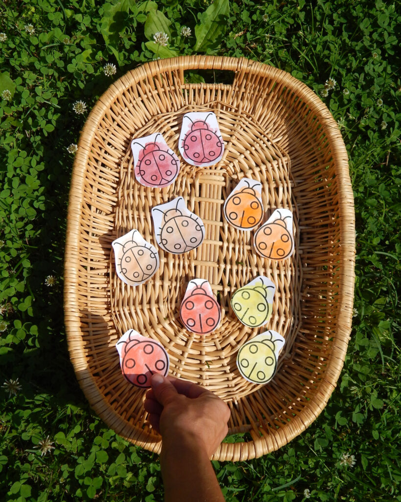 ladybug sorting activity for preschoolers