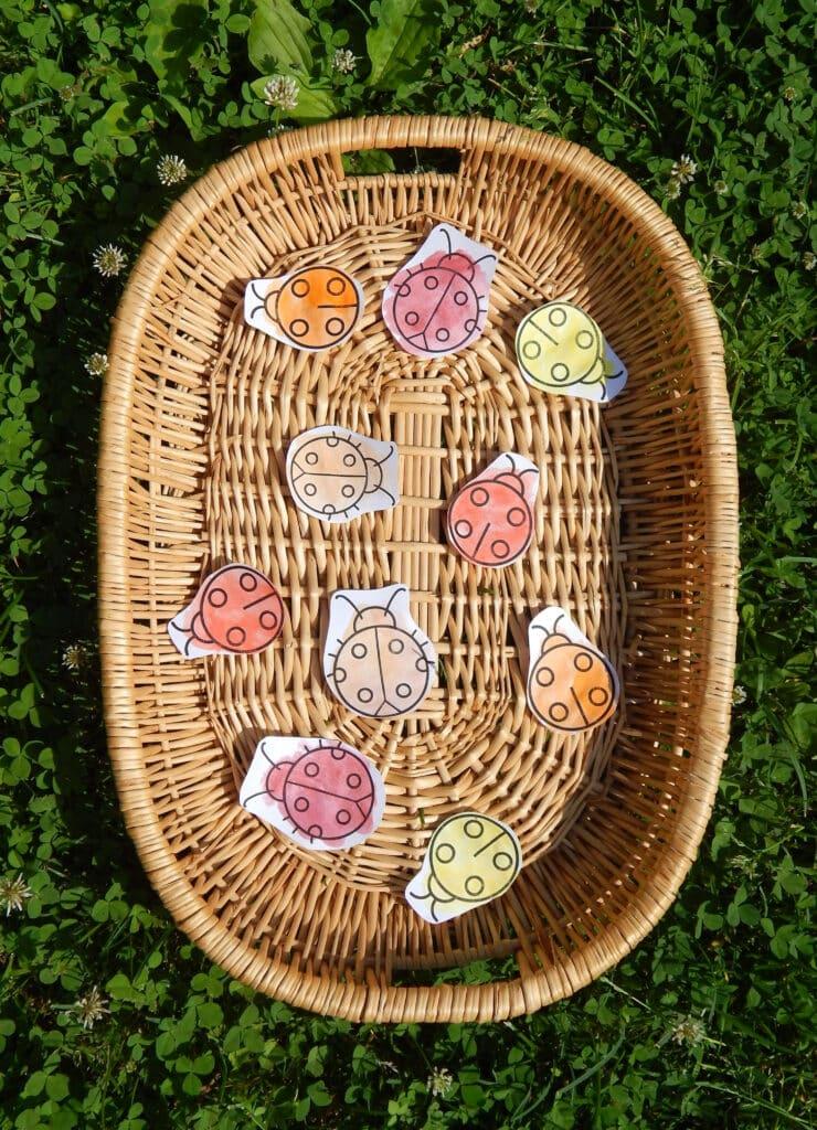 basket with ladybug sorting activity for preschoolers