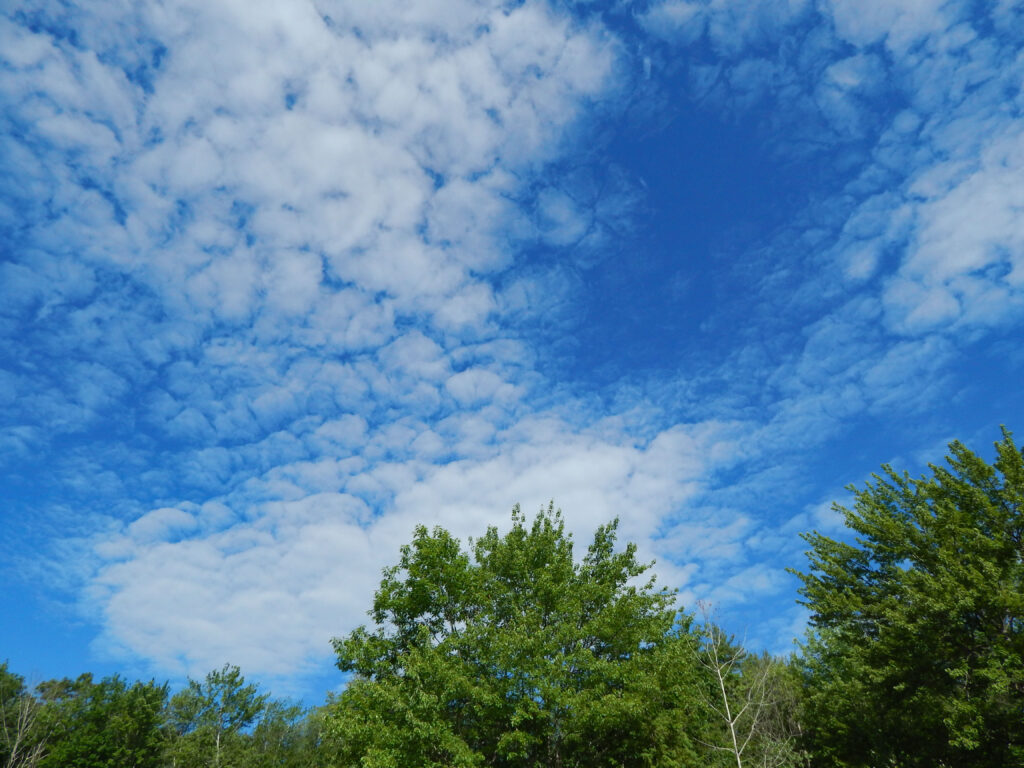 stratus clouds with bright blue sky and trees