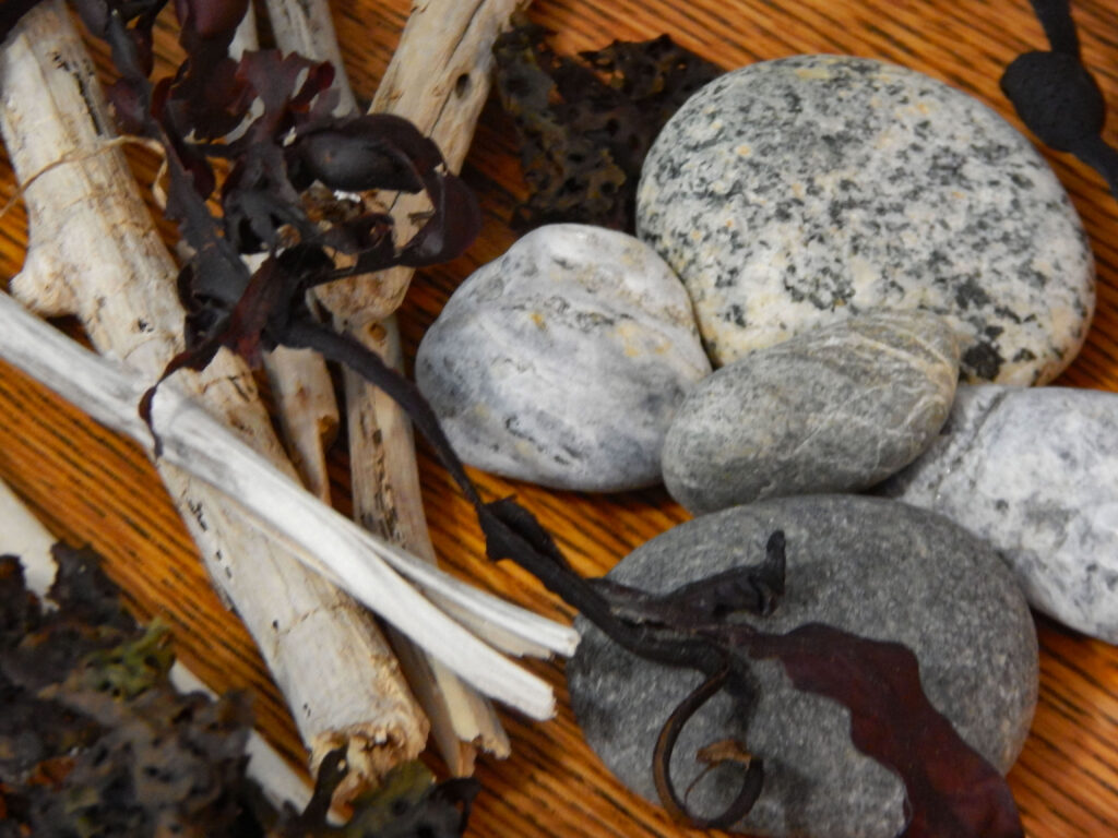 collection of ocean themed objects rocks, driftwood, and seaweed on wooden table