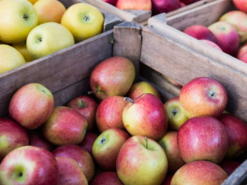 four different varieties of apples in wooden crates