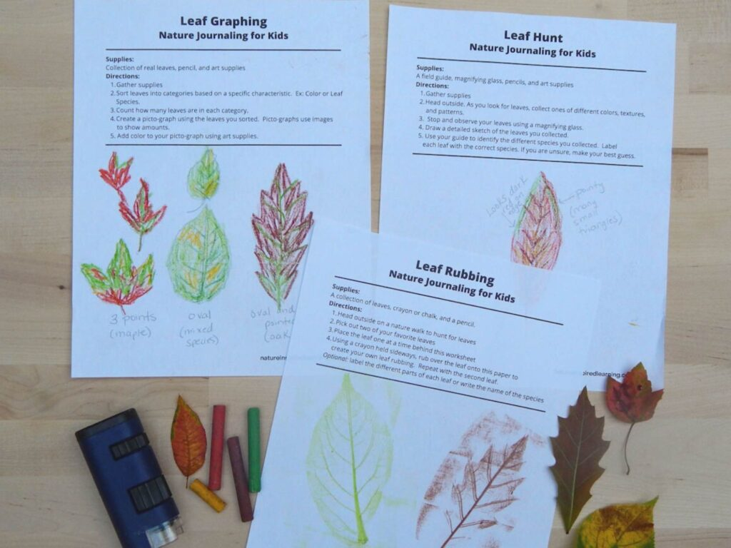 three leaf nature journaling entries for kids with leaf drawings done in color with colorful fall leaves, a blue field microscope, and crayons on a wooden surface