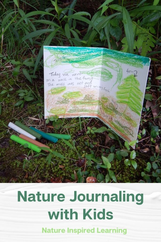 woodland forest nature journal entry in color outside with art supplies