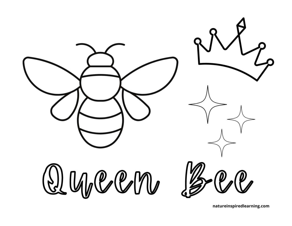 queen bee coloring page bee on the left crown top right with three stars and text queen bee below