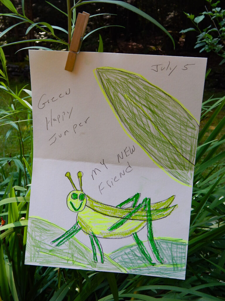 grasshopper drawing with green leaves with text child's nature journal entry
