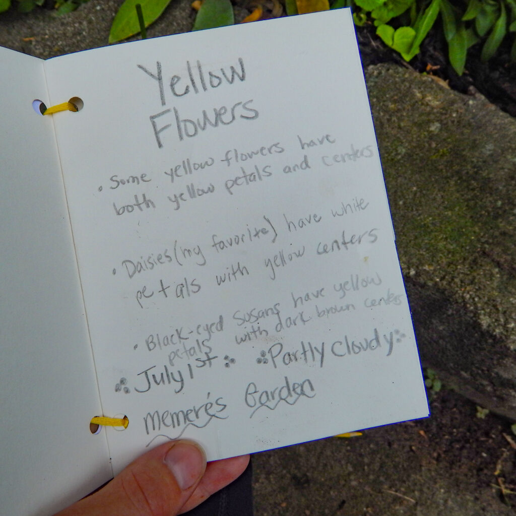nature journal entry homemade journal yellow flowers with desciptive words no illustrations hand holding it up outside