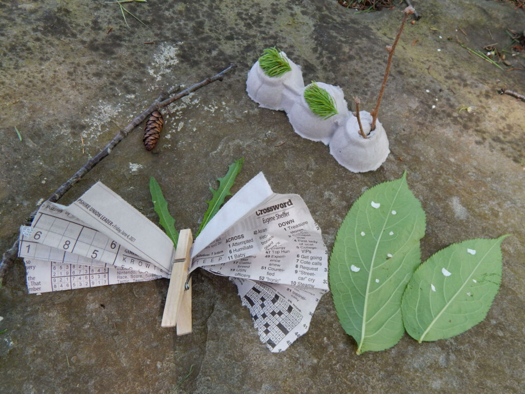 newspaper clothespin butterfly, pine cone chrysalis, egg carton caterpillar, and leaf with white flowers as eggs all on a rock with moss