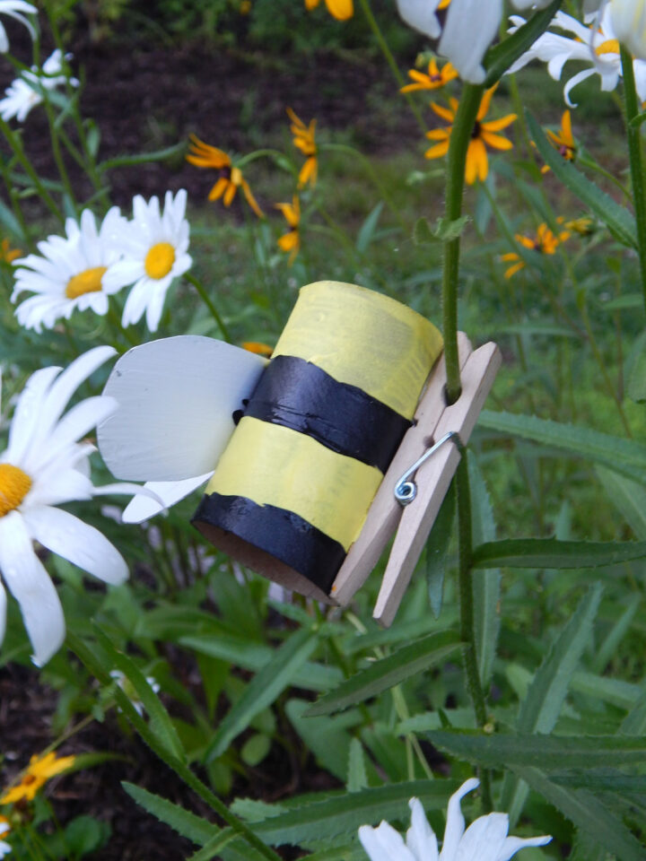 homemade toilet paper roll bumble bee craft with an added wooden clothespin clipped to a daisy out in the garden