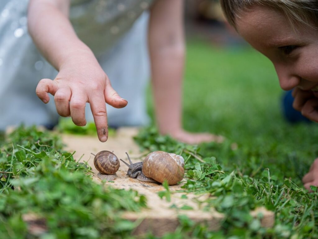 young child pointing to a snail while another child looks closely at the snails