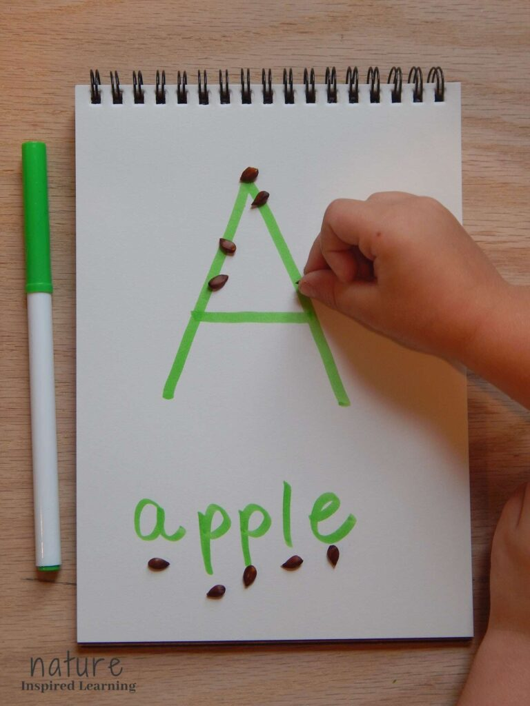 hand placing apple seeds on the letter A written in green marker on a blank spiral bound notebook page word apple written below with one apple seed below each letter
