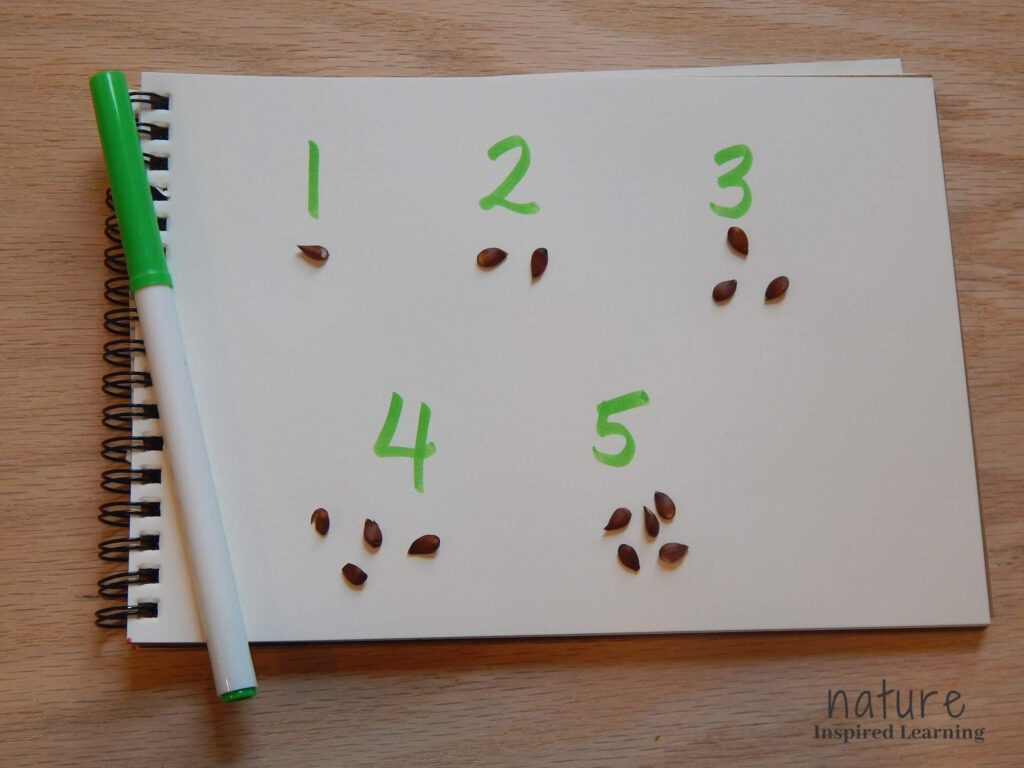 numbers 1 through 5 written in green marker on plant page in a spiral bound notebook with apple seeds below each number in number groups green marker on the side of the notebook on a wooden table