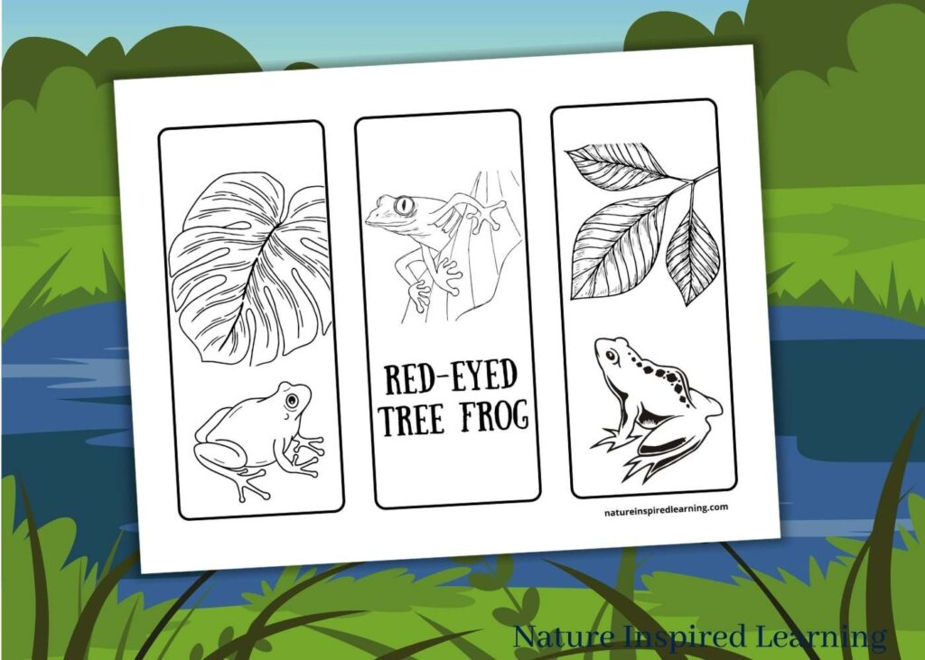 three printable frog bookmarks with different species of frogs and leaves red-eyed tree frog text with pond graphic