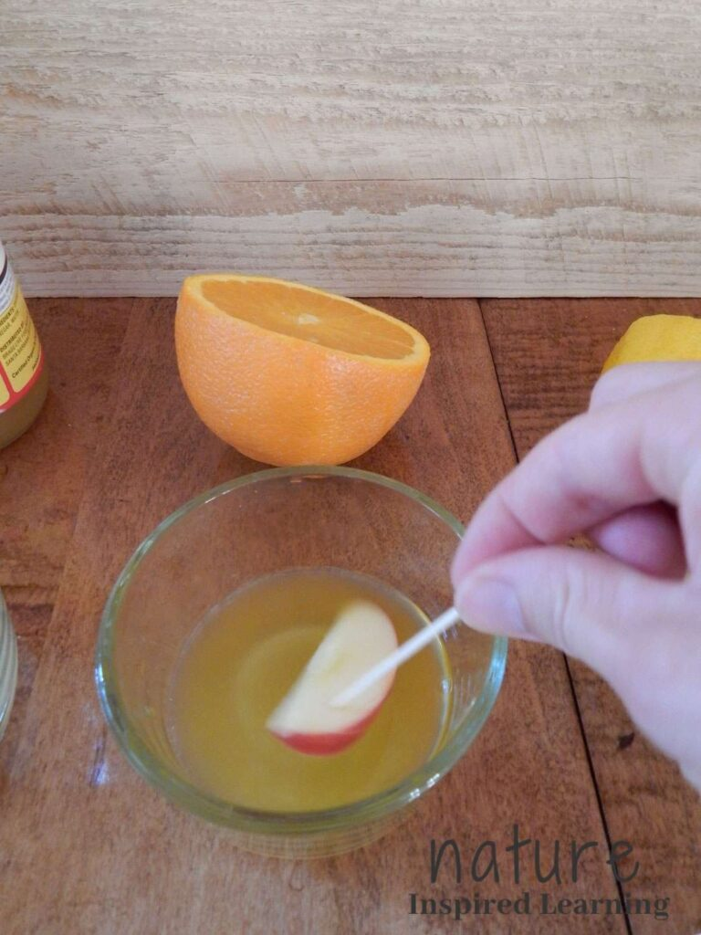 hand holding a toothpick pricked into an apple slice dipping into a small glass bowl with fresh orange juice half of an orange behind the bowl text nature inspired learning