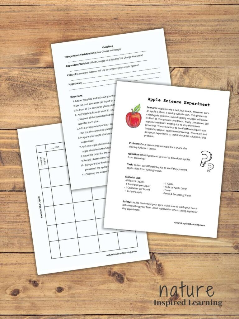 three page guided worksheet for apple oxidation experiment overhapping on wooden background text nature inspired learning bottom corner