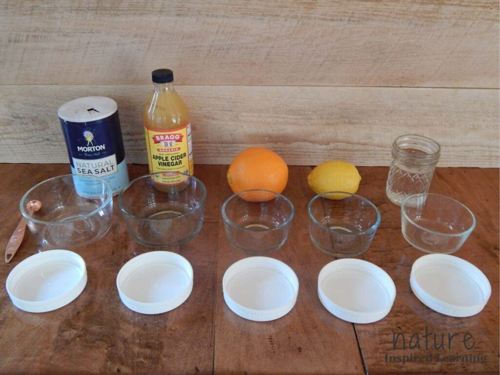 apple science experiment supplies on a table five white plastic lids empty in front of five small glass containers empty with supplies to make liquids behind them water in a glass jar a lemon an orange apple cider vinegar in container natural sea salt container with copper measuring spoon on table