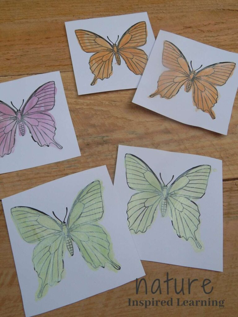 butterfly coloring sheet cut up and turned into a paper based matching game yellow and orange butterfly cards matched up with one unmatched pink butterfly text nature inspired learning bottom corner