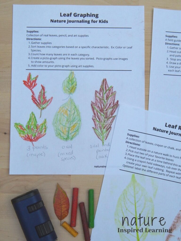 a collection of fall leaf printable nature journal entries on a wooden surface leaf graphing with drawn and colored in leaves with leaf rubbings done in crayon with field microscope, four crayons, and one small colorful leaf