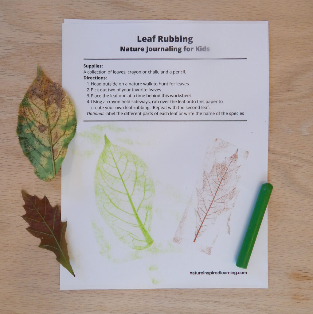 leaf rubbing nature journal entry on a wooden table with two colorful fall leaves and one green crayon