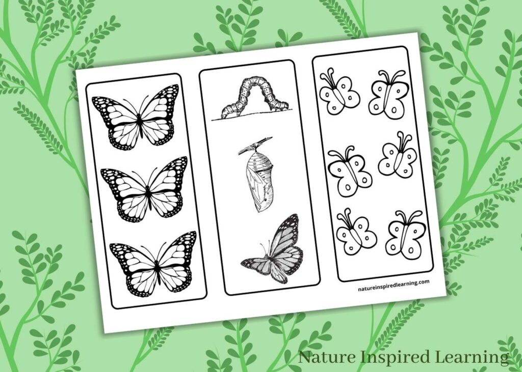 free printable butterfly bookmarks for kids with green floral background