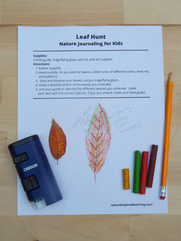 free printable leaf hunt filled out using crayon on a wooden table with a navy blue field microscope, yellow, green, red, and brown crayons and a pencil on a wooden surface