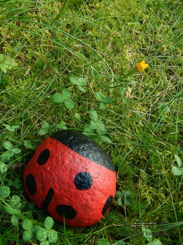 beetle painted rock outside in the grass painted red with black spots