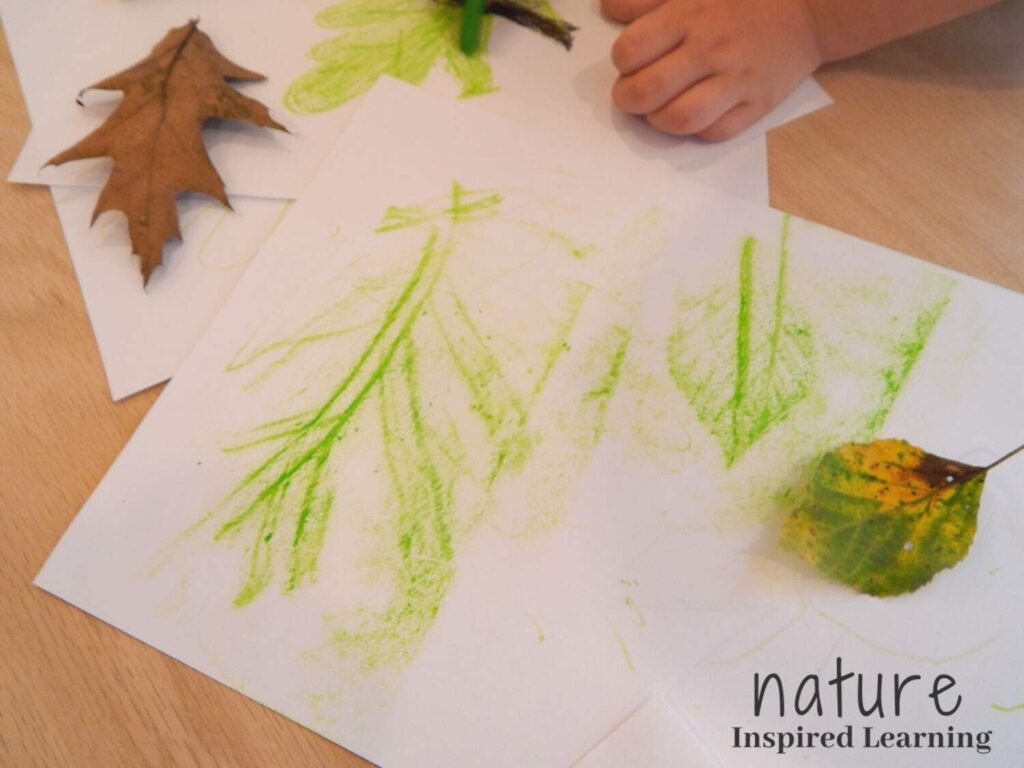 homemade leaf rubbings on a wooden table created by a preschooler two fall leaves with one green crayon toddler hand in the upper corner