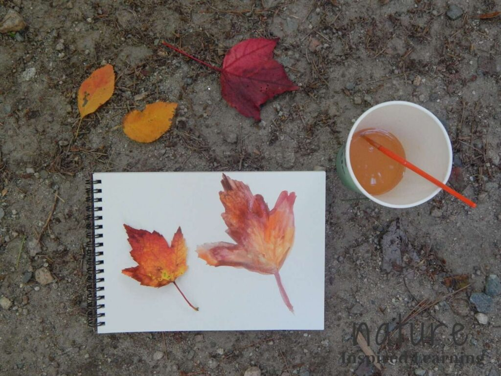nature journal with a watercolor red, yellow, and orange maple leaf with the real leaf next to it cup with orange water and paint brush red maple leaf and two yellow leaves above the journal