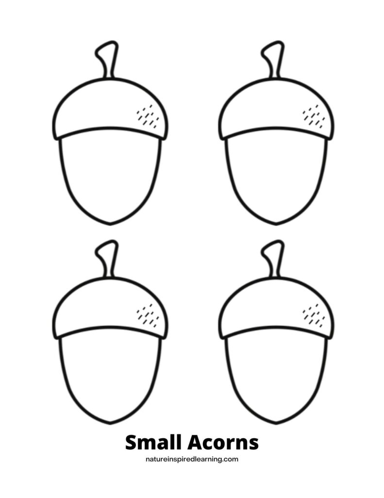acorn coloring page with four basic acorn outlines with a few lines in the corner on the acorn top text Small Acorns across bottom