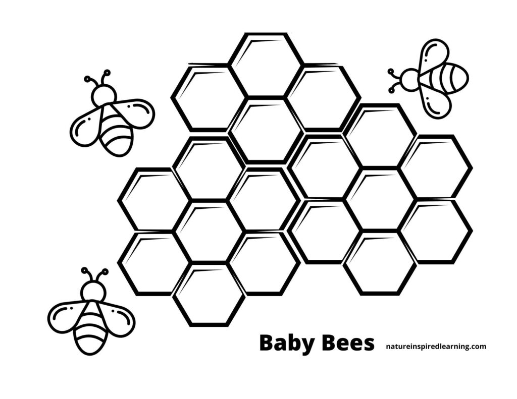 three small baby bee clip art bees with hexagon honeycombs in the middle all in black and white