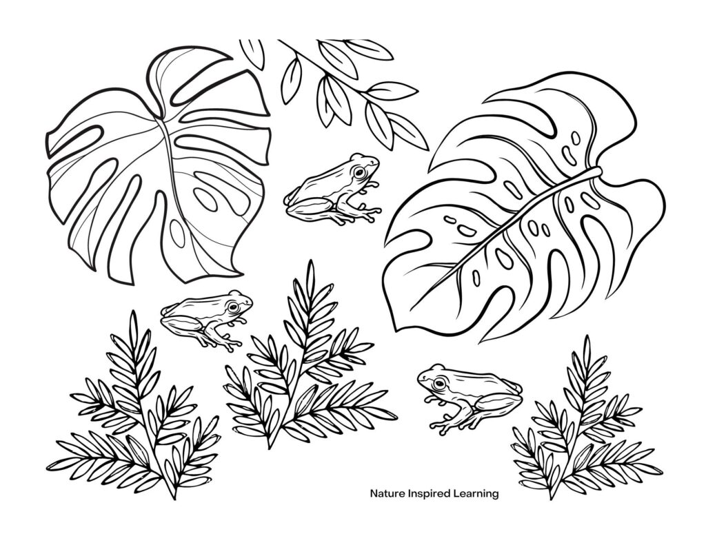 three small baby red-eyed tree frogs hidden in a forest scene coloring page