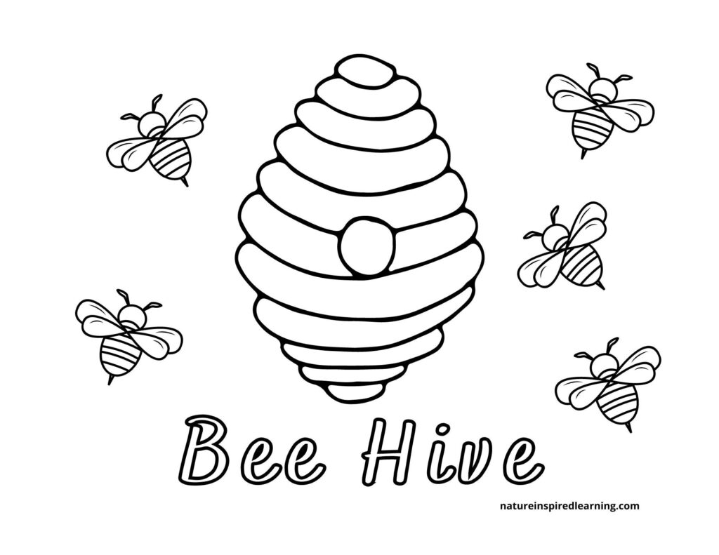 free bee coloring page with a bee hive and five little honey bees with stingers text bee hive written on the sheet