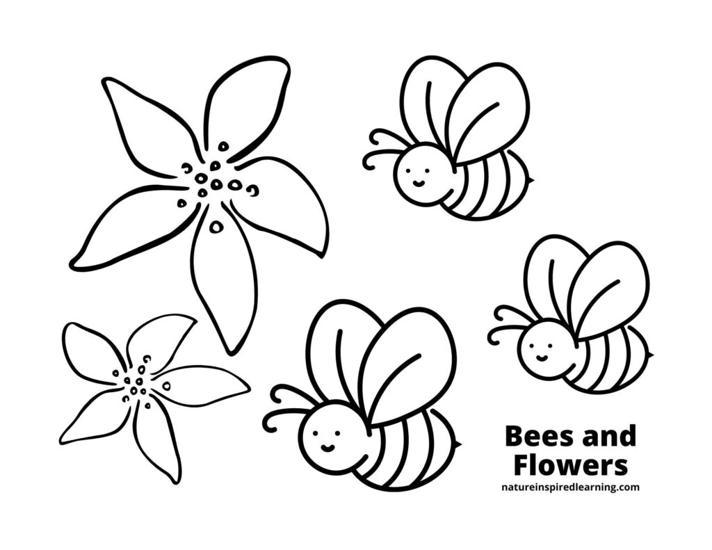 three clip art happy bees, one large flower, and one small flower coloring page