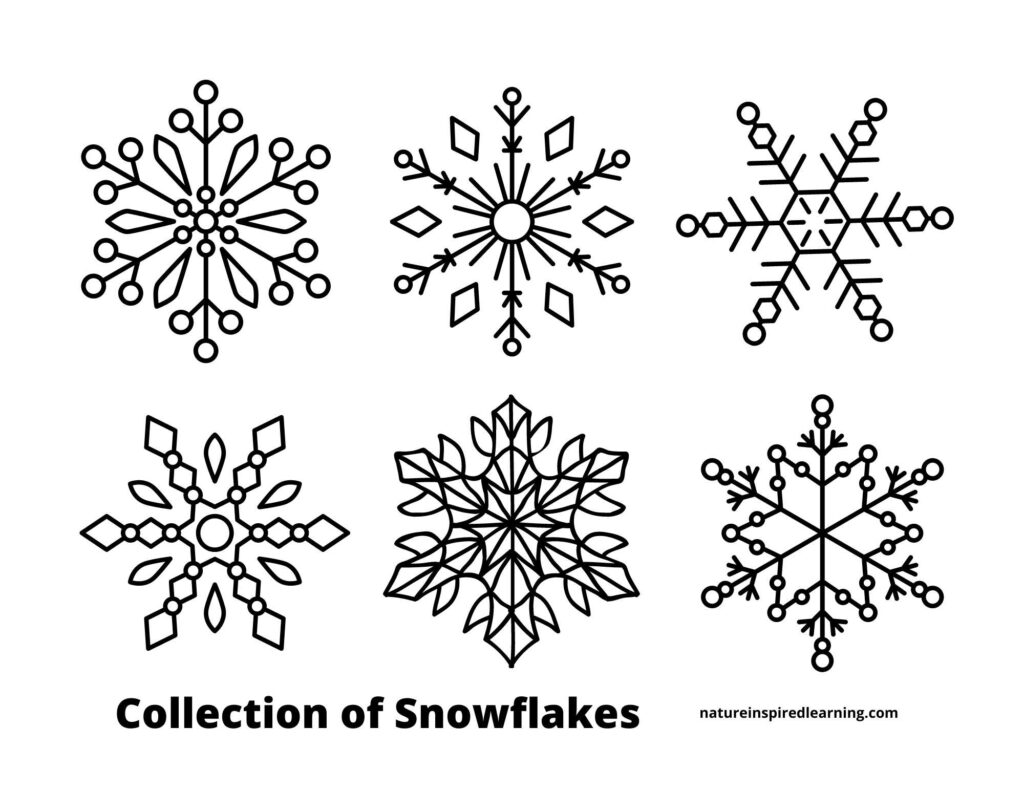 collection of snowflakes six different snowflake designs arranged in a grid