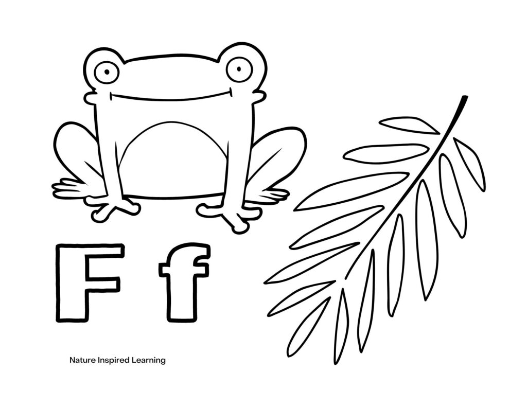 Smiling frog with a fern and Capital F and lowercase f coloring sheet
